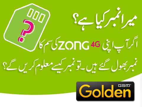 Zong Number Check Code – Find Zong Number