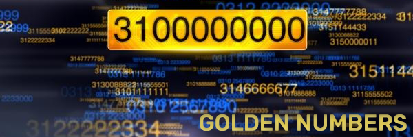 Zong Golden Numbers